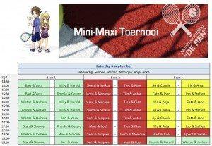 mini maxi 2015